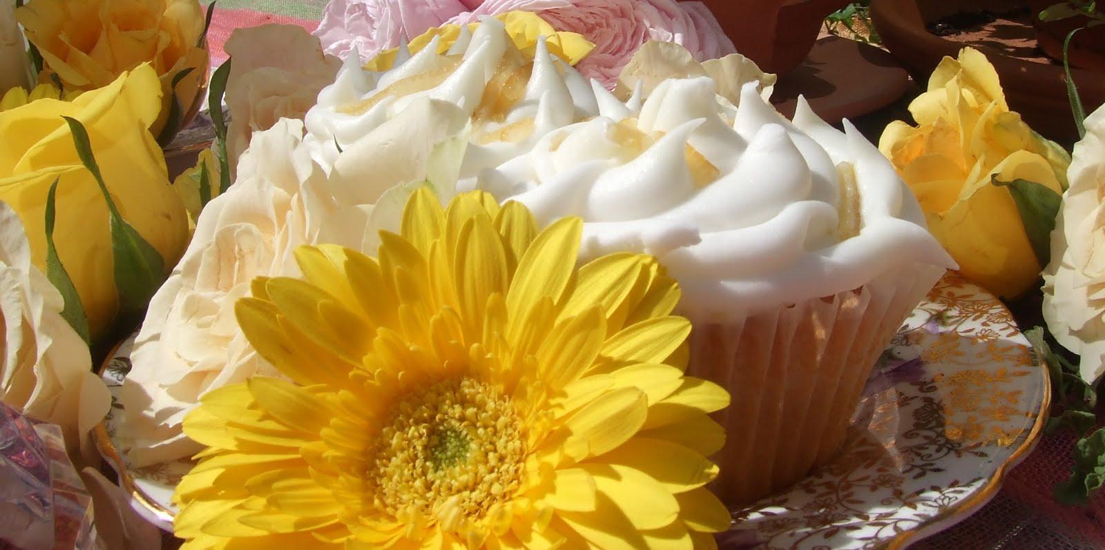 Cupcakes & Conversation