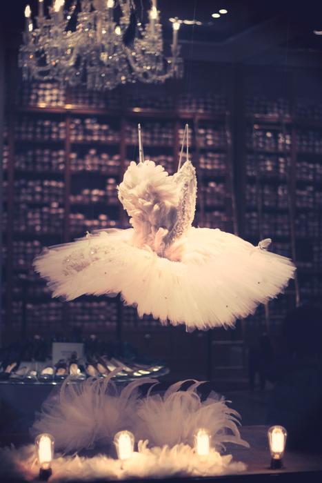 Repetto swan tutu