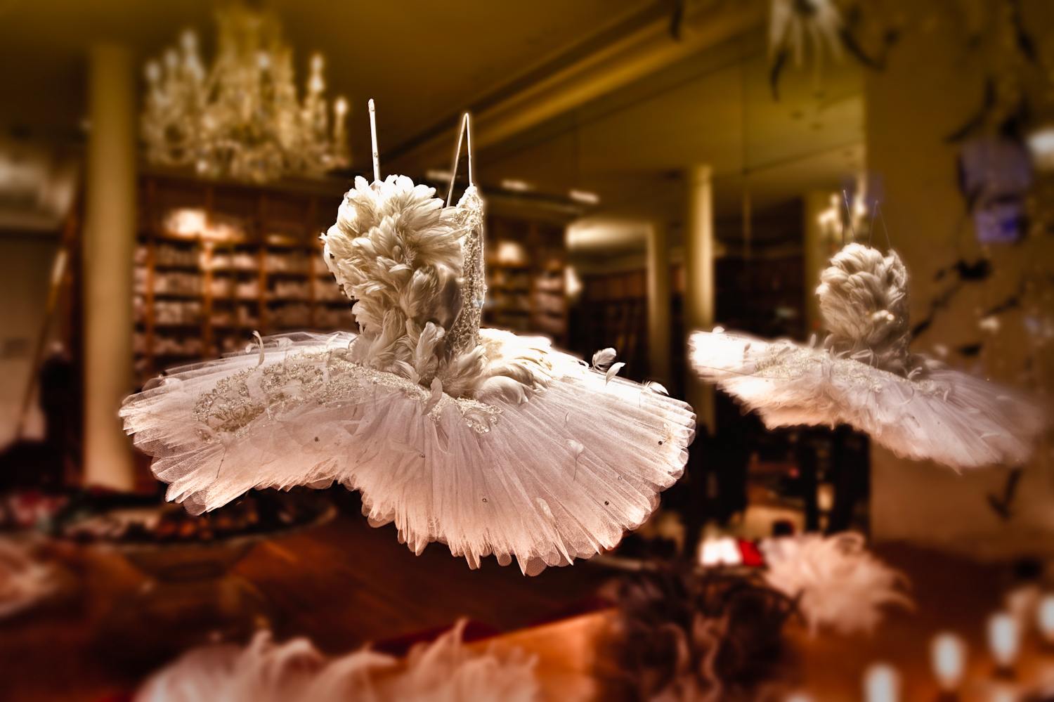 two Repetto tutus in the window